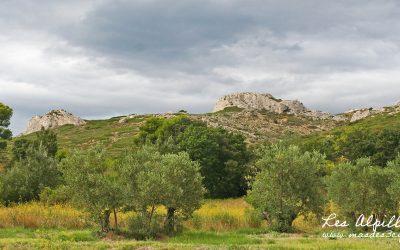 Découvrez la Provence en septembre